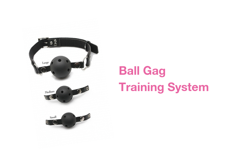 ball-gag-training